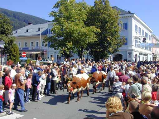 Almabtrieb im Bauernherbst - Radstadt SalzburgerLand